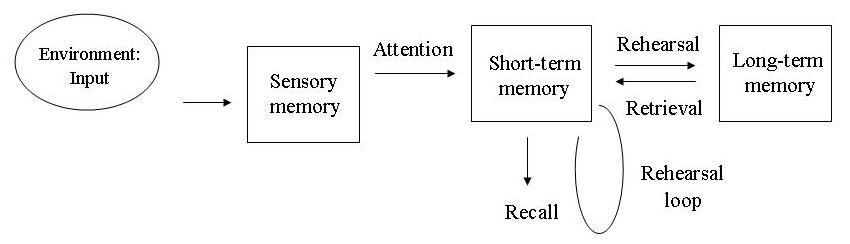 Multi-Store-Model